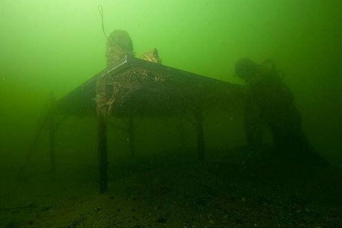 unterwasserfotos_18_20141106_1016502657.jpg
